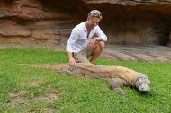 """Rhinos and Tigers and Komodo Dragons, Oh My!"" Courtesy derekhough Facebook"